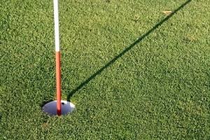 ゴルフホール芝