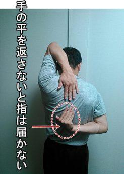 下の手の平を返さないと指は届きません
