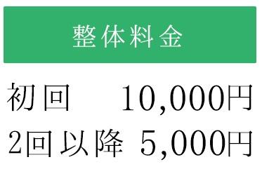 整体料金初回10000円