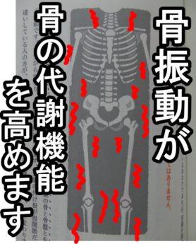 骨振動が骨の代謝を高めます