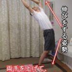 伸びをする姿勢