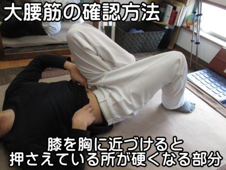 大腰筋の確認