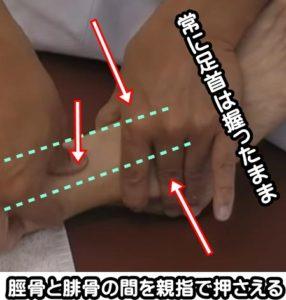 脛骨と腓骨の間を親指で押す