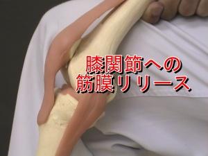 膝関節への筋膜リリース