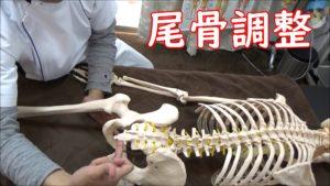 尾骨調整横のズレを押し込む