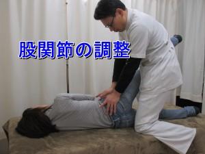 股関節の調整