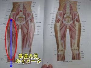 普通の足のイメージ