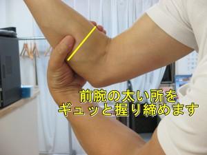 前腕の太い所を握る