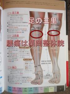腰痛にも効く足の三里のツボ。