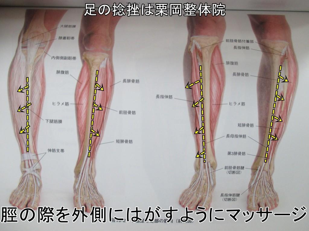 脛の外側をはがすようにマッサージ