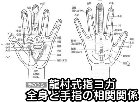 全身と指の相関関係指ヨガ