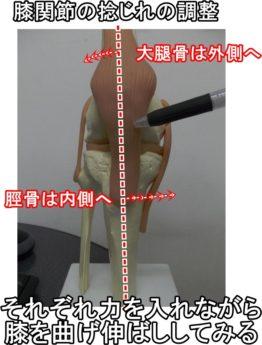 膝関節の捻じれの調整