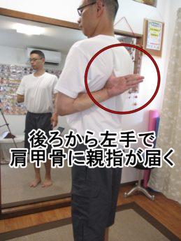 後ろから左手で肩甲骨まで親指が届く