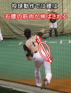 野球投球動作では腰は右が伸びる