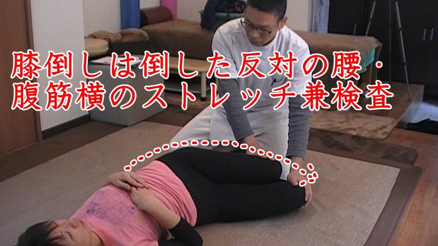 検査兼ストレッチ(膝倒し)。仰向けで膝を立てて、左右に倒すと腹筋の横側から腰に掛けてのストレッチになります。また極端に片方が倒しにくい場合は骨盤のゆがみが大きく関係しているので、骨盤調整をして左右のバランスをとっていきます。