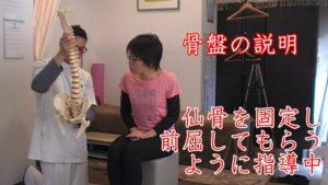 骨盤の説明から仙骨リリース。部分部分で違和感を取り除いて、まだ全体に若干座った状態にだるさがある様なら、仙骨の動きをよくする動体療法を行います。実際に始めてするときは、骨盤模型を使って仙腸関節の動きを説明して、イメージを膨らませます。