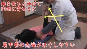 腕を後ろに伸ばし(屈曲)、内側に寄せる(内転)ことで、肩甲骨の一番凝りやすい部分が浮き出て来てほぐしやすく成ります。