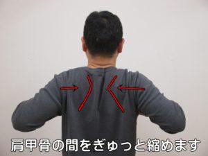 肩甲骨の間をぎゅっと縮めます