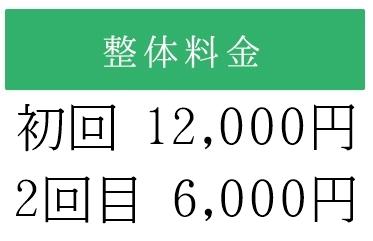 初回12000円2回目6000円